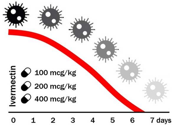 Ivermectin untuk rawatan Covid19